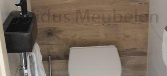 accessoires toilet-toiletborstel-en-planchet-en-fontein2